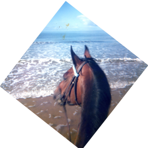 Le bonheur est là sur Allinton face à l'océan. St Jean de Mont, été 1986