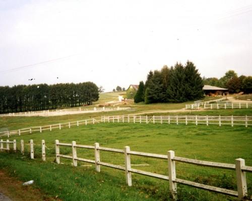 photo-site-n.281